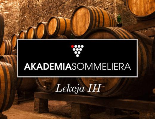 fermentacja-wina-Fine-Wine