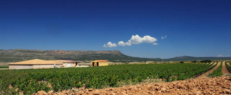 Gil Estates Family Bodega Atalaya Fine Wine