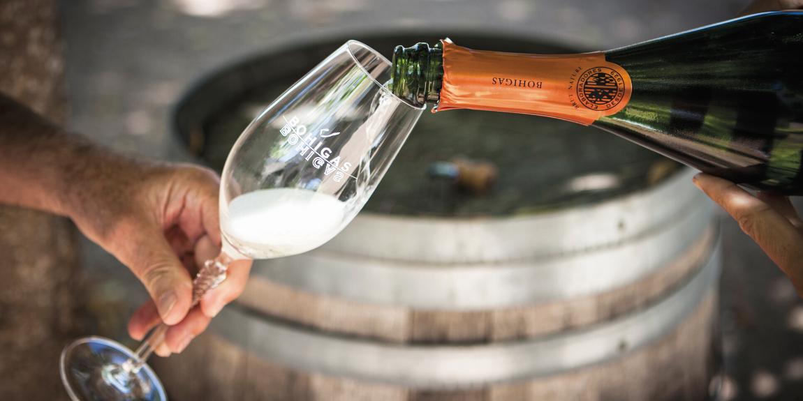 wino cava - wino musujące fermi Bohigas
