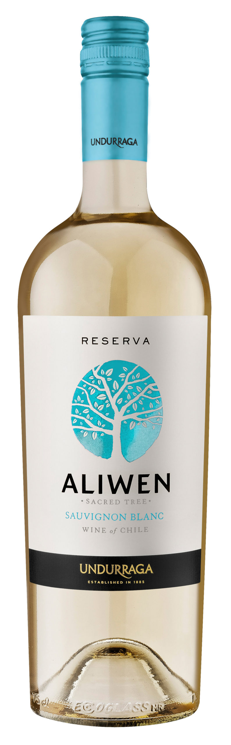 Sauvignon Blanc Fine Wine