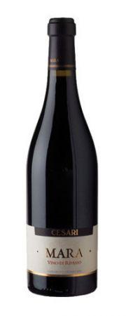 Valpolicella Ripasso - wino włoskie